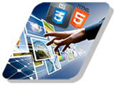 Diploma in Web Design & Development (DWDD)